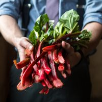 Thumnail version for full version of Person holding a bunch of swiss chard.